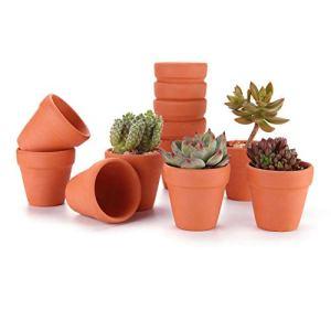 T4U Vaso Terracotta in Argilla Rosso 5CM Argilla Set di 12 Vaso per Piante in Miniatura Fioriera per Piante Sospese Cactus Erbe per Matrimonio Compleanno Casa e Ufficio Decorativo