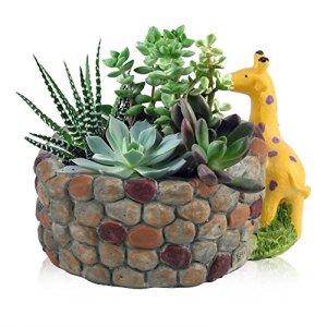 Zerodis Resina Succulente Pot a Forma di Animale Piante Succulente ArtificialiVive Contengono Fioriere Herb Fioriera Decorazione della Casa GiardinoGiraffa