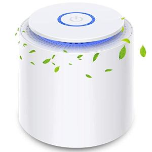 Purificatore dAria Portatile con Filtro HEPA USB Desktop Filtro dellAria con Luce Notturna e Funzione di Aromaterapia Rimuovere Polvere Fumo Odore Peli di Animali Domestici per Casa Ufficio