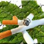 Hukum Rokok Herbal
