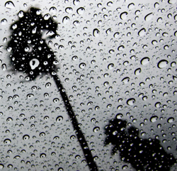 Hujan Deras di Hari Jumat