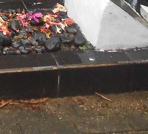 Hukum Menabur Bunga di atas Kuburan