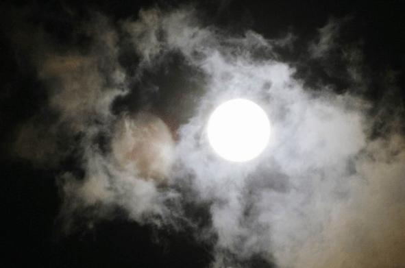 Bulan Dzulhijjah