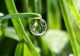 Setitik Nila Tak Rusak Susu Sebelanga
