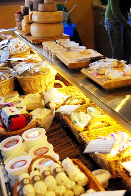 The great selection of goat cheese at Carmelis Goat Farm