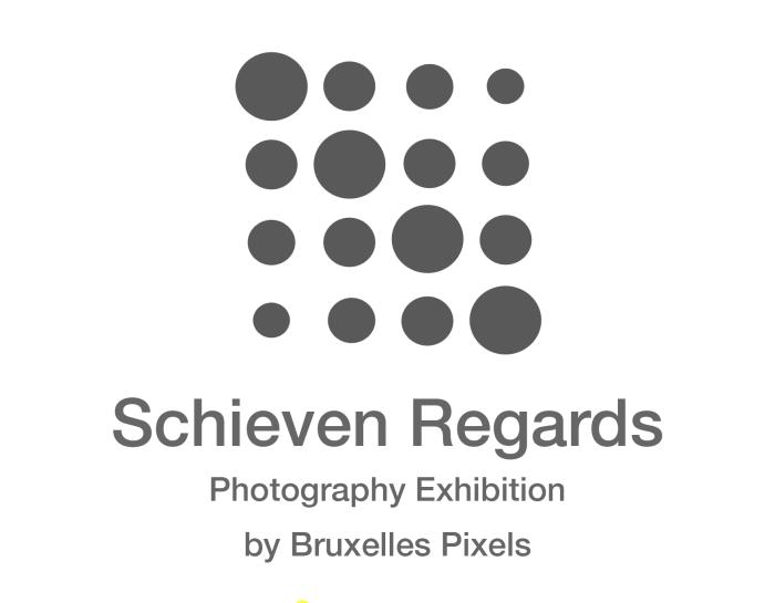 Ars Varia vous présente Bruxelles-Pixels et son «Schieven regards»