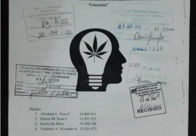 Solicitan legalizar consumo y autocultivo de la marihuana en Venezuela