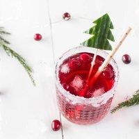 *11* Weihnachtlicher Cranberry Gin Tonic