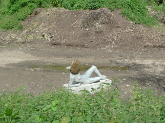 Pierre Huyghe, Untilled, 2011–2012.