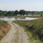Cavaglia, le long des rizières