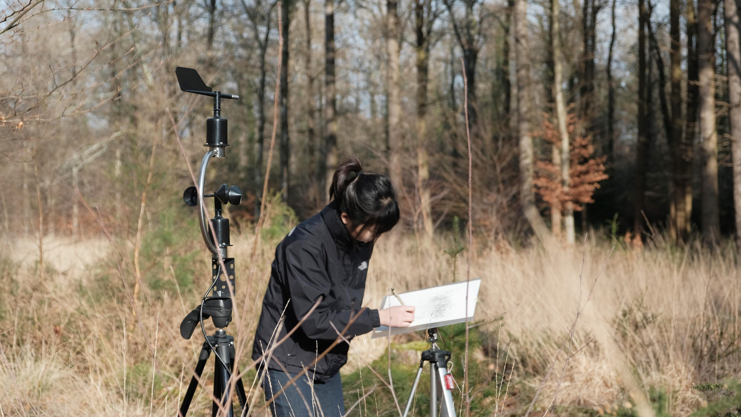 Artist with wind detector and drawing board standing in a dry grass landscape, with a forest in the background.