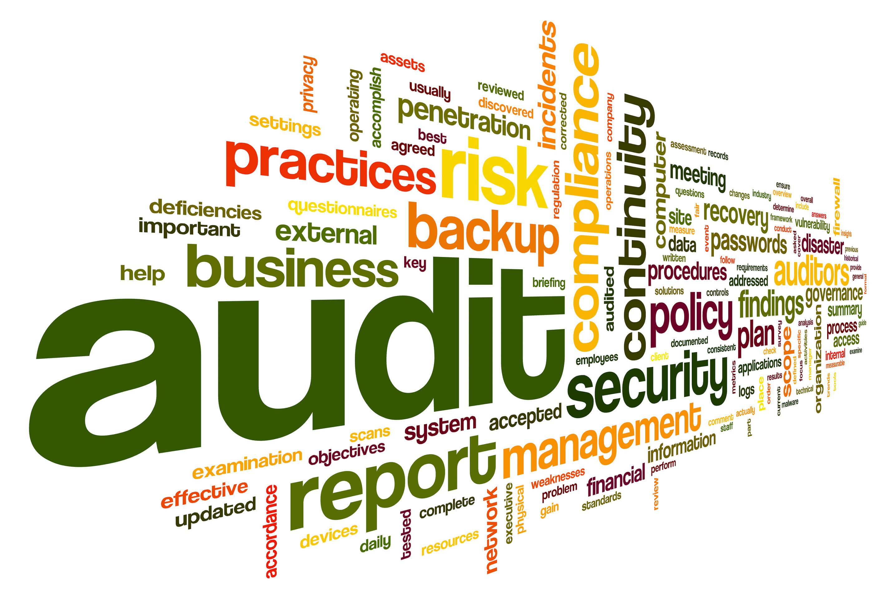 Information Technology Audit