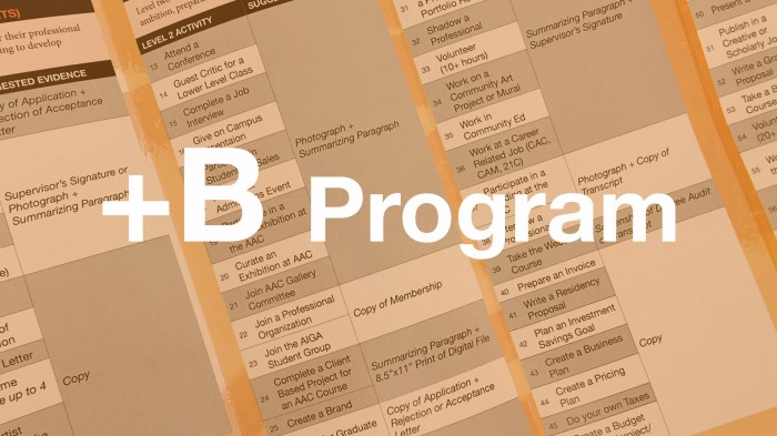 Plus-B-Program-Web