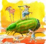 7 scarabeo