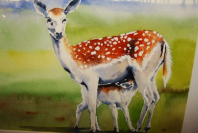 Two Deer watercolour