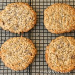 Chia Hemp Seed Oatmeal Cookies Art And The Kitchen