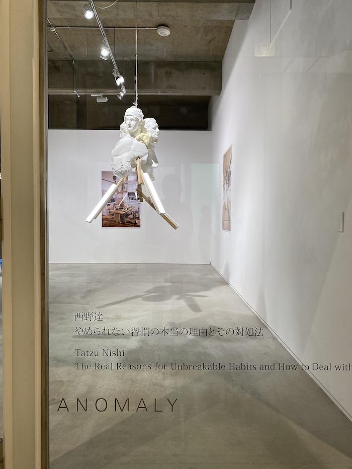 ANOMALY TERRADA ART COMPLEX