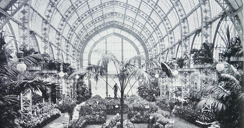 Pflanzenausstellung Detail