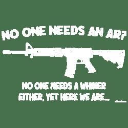 NEEDS AN AR