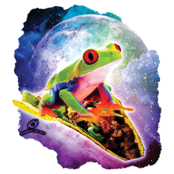 RED TREE FROG RIDING TACO