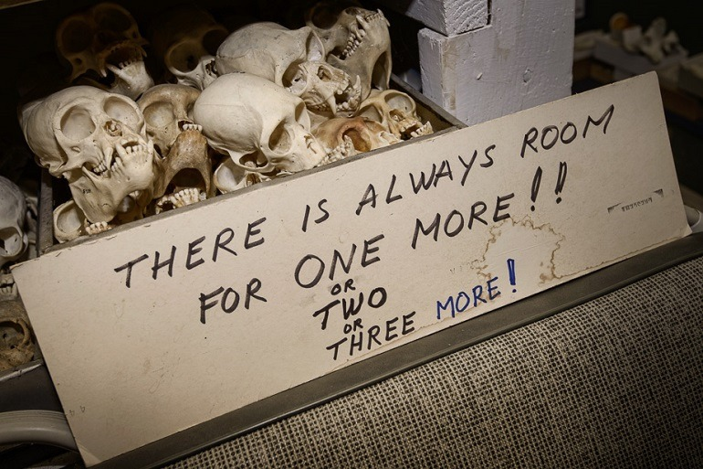 Image- A sign in front of a real animal skulls shows Raymond Bandar passion as a bone collector