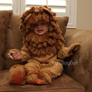 Lil Lion Costume Review- Cuteness Overload -The Wholesale Costume Club
