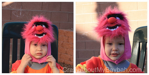 The Muppets Animal Toddler Costume