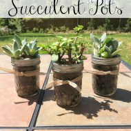 DIY Succulent Pots Perfect Gifts for Mothers Day or Teacher Appreciation!