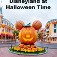 10 Great Reasons to Visit Disneyland at Halloween Time