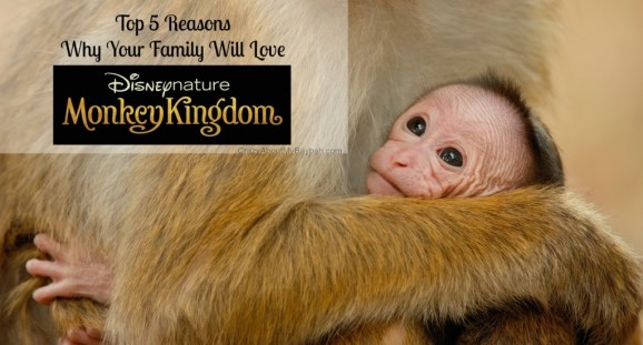 Top 5 reasons to see Monkey Kingdom