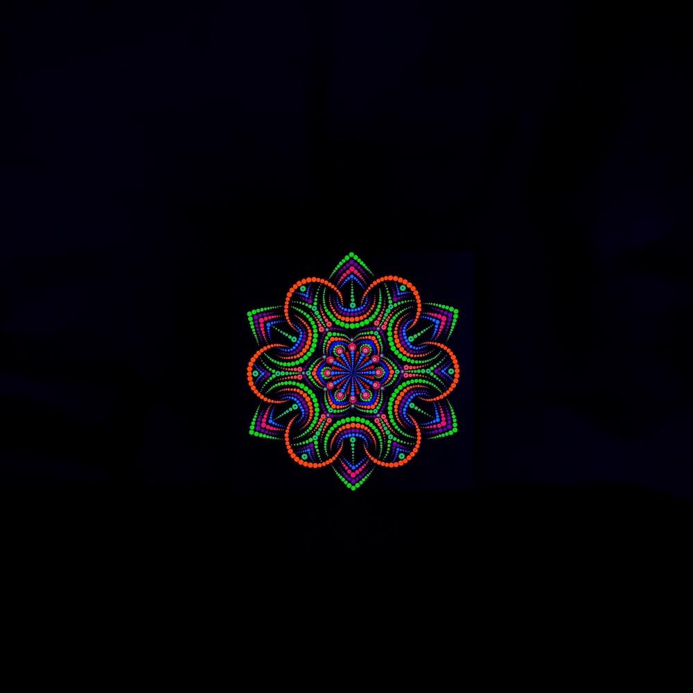 Night Flower UV Dot Painting