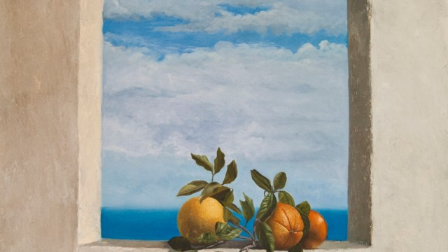 window,florida,tropical,still-life,fruits,oranges