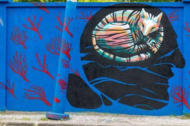 Muro azul (23)