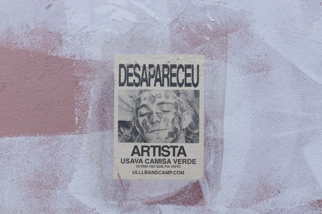 Desapareceu artista (11)