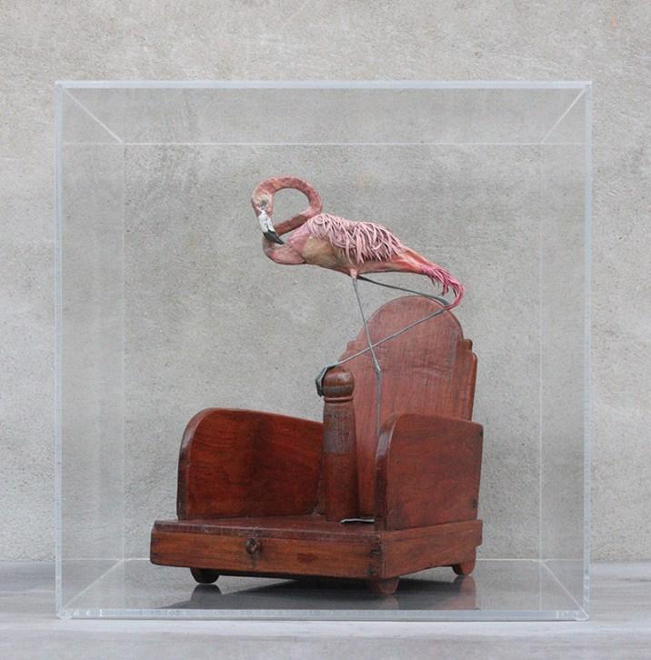 Alice Zanin, Post Fata Resurgam, 2015, cartapesta, piume, giocattolo di legno proveniente dal Rajasthan, cera rosa, acrilico, plexiglass, cm 50x50x50