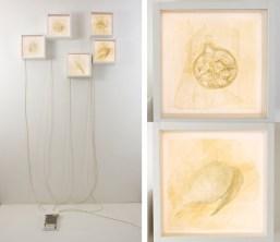 Natura morta de-composizione, 2016, cm 90x70x11 (24x24x11 cm ogni singola light-box), scultura in carta (carta, legno, plexiglas, led luminosi)