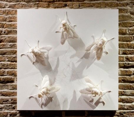 Whiteflies, 2012, cm 90x90x8 (20 cm lunghezza di una singola mosca), scultura in carta (carta, filo di rame)