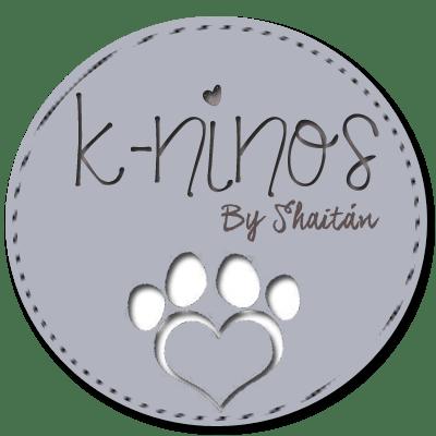 La experiencia K-ninos y su imagen corporativa (Parte I: Logotipo)