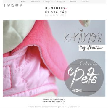 La experiencia K-ninos y su imagen corporativa (Parte VI: Presencia en la web)