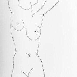 """Matisse """"DM0246"""" DLM 1952"""