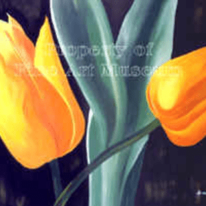 Grace Absi Yellow Tulip L. E. signed & numbered