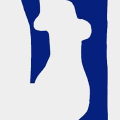 "Matisse lithograph ""Blue Nude Venus"" 1083"