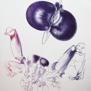 François Lunven, Hand Signed Original Lithograph, Poete aux interstices 1972
