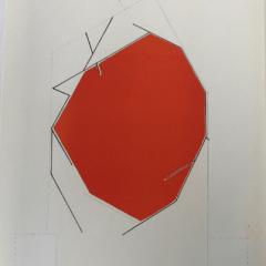 "Pablo Palazuelo Lithograph DM10184"" DLM 1970, Mid-century modern, Art Wall Décor, Contemporary art,"