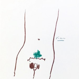 Picasso Lithograph 41, Adam, Stories without love