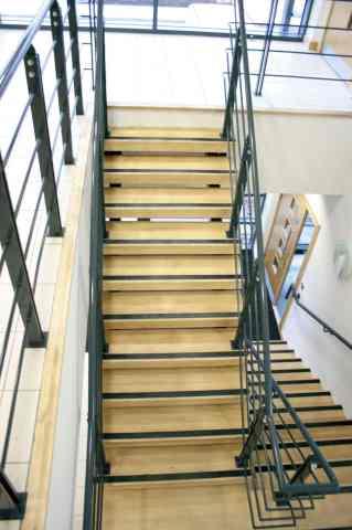 Stepline Original on maple steps