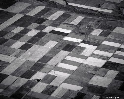 Fields, Colorado, 2012