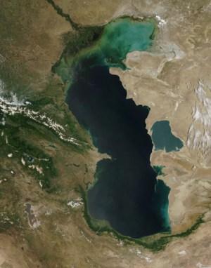 eutrophierung kaspisches meer