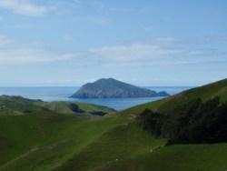 stephens island