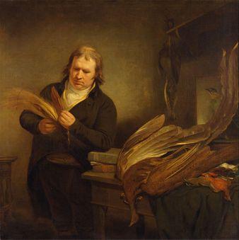gemälde von john latham, der die erstbeschreibung der Norfolk-Erdtaube lieferte